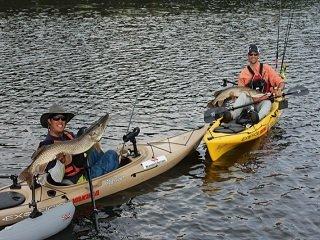 file_166481_0_kayakpike