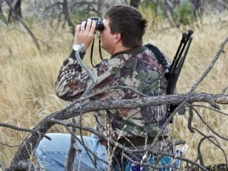 Scouting for Whitetail