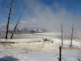 Yellowstone in the winter months