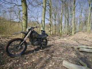 Dirt bike in woods