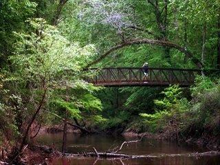 Trailheadin': Turkey Creek Trail