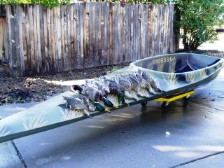 file_166853_0_Scull-Boat-Ducks