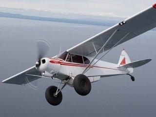 Scout Plane