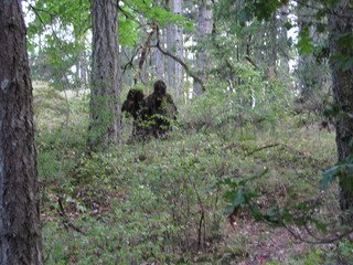 file_167586_0_sasquatch