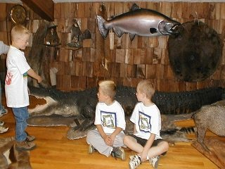 file_168033_0_kids_and_taxidermy