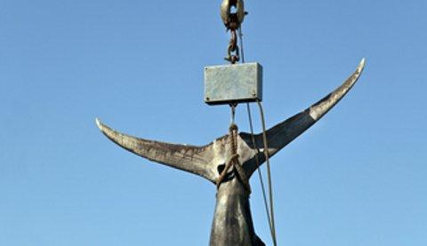Big Rock Blue Marlin Tourney Crowns Fab Fisherman