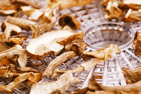 mushrooms dried