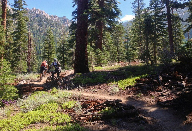 Top 6 Epic Rides in 2015 Named by International Mountain Biking Association