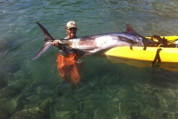 Kayak Fisherman Lands 158-Pound Marlin in Unbelievable Story