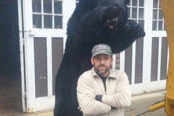 650-Pound Massachusetts Black Bear Falls Short of State Record