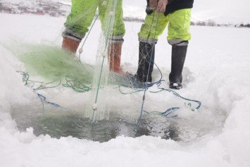 How To Stay Safe On The Ice This Winter