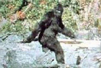 Will We Ever Solve the Bigfoot Mystery?