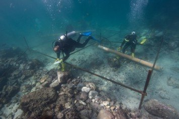 Ancient Shipwreck Off Oman is Vasco de Gama's