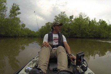 Kayak Angler Encounters Giant Alligator in Louisiana Delta