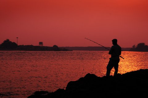 angler silhoutted