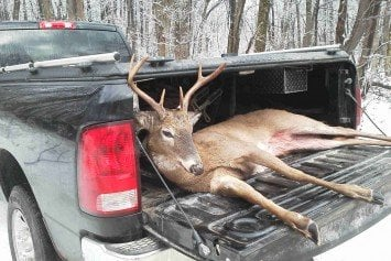 Top 6 Rides for Getting to the Hunt