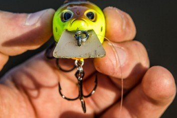 Where to Fish Square Bill Crankbaits