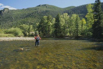 5 Tips for Summer Fly Fishing with Terrestrial Insects