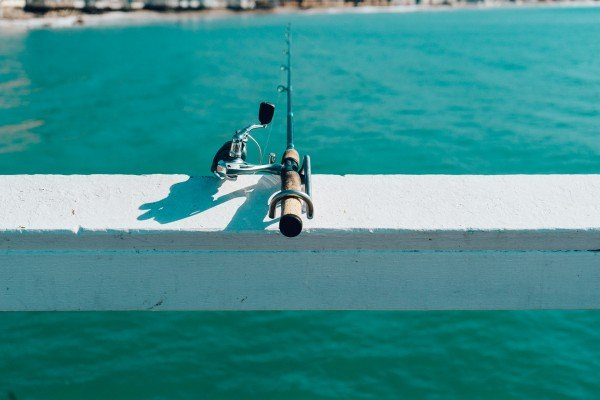 Image result for How to Choose the Right Fishing Rod?