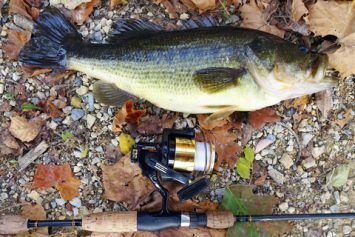3 Tactics for Catching Fall Bass