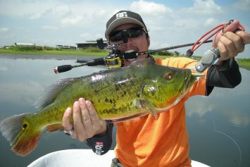 Top 5 States for Bass Fishing
