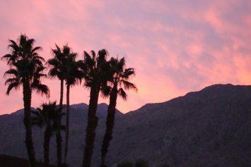 5 Ideal Desert Getaways
