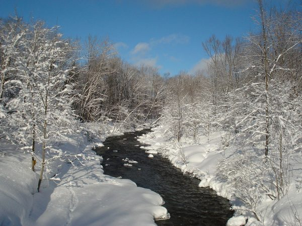 North_Branch_Salmon_River,_Tug_Hill_region,_NY_(winter)
