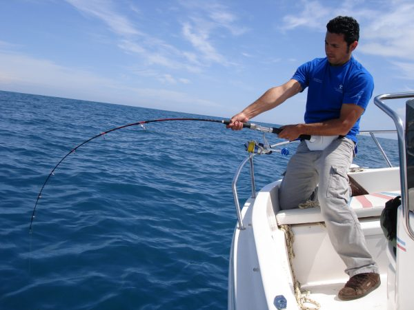 Best Saltwater Fishing Knots In 5 Setups Liveoutdoors