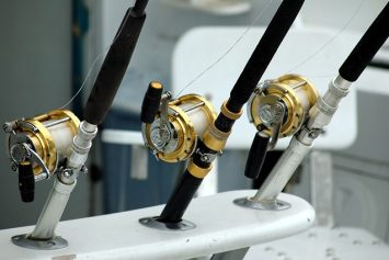 How to Maintain a Fishing Reel for Saltwater Anglers