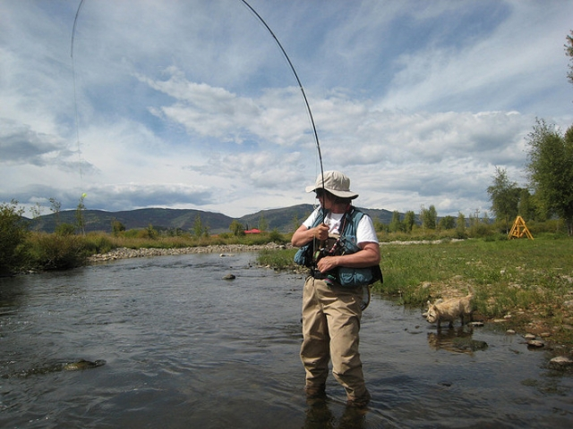Fishing Waders